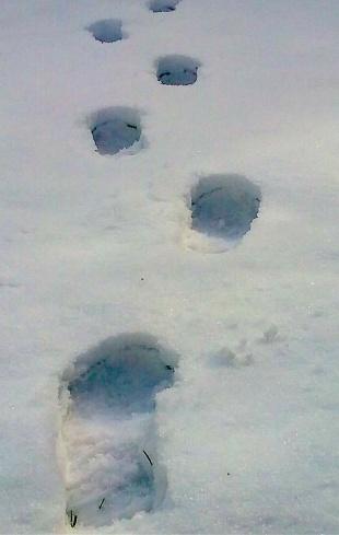stranger_footsteps_2